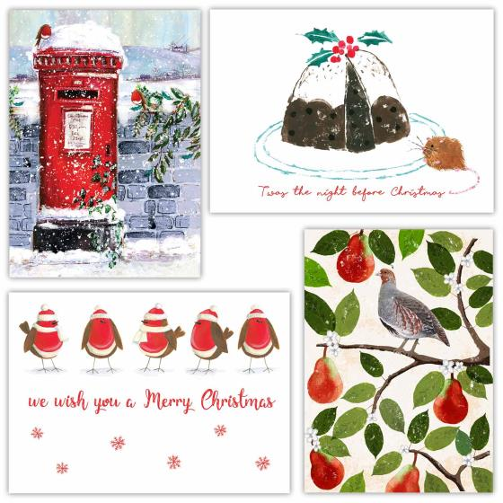 Fab forty RSPB charity Christmas cards - 40 pack 2020 product photo Front View - additional image 1 L