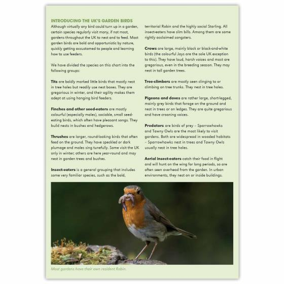 Garden birds identifier chart - RSPB ID Spotlight series product photo Back View -  - additional image 2 L