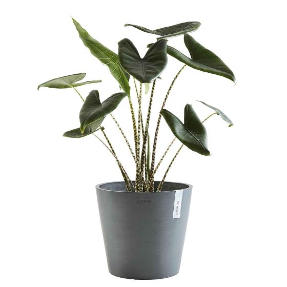 Grey eco plant pot by Ecopot product photo Front View - additional image 1 L