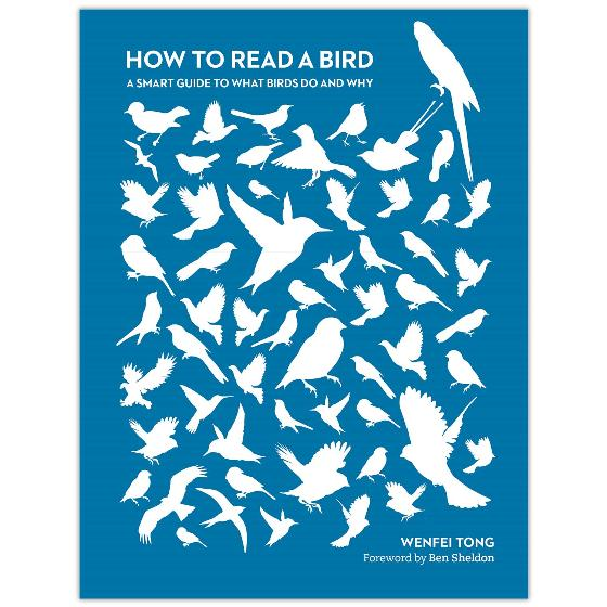 How to Read a Bird: A smart guide to what birds do and why product photo Default L