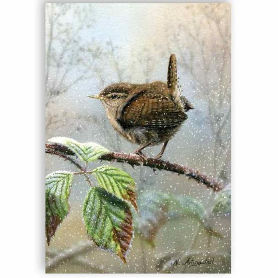 Little Jenny wren RSPB charity Christmas cards - 10 pack product photo Default L