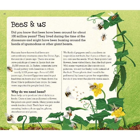 Love Bees: A family guide to help keep bees buzzing product photo Front View - additional image 1 L