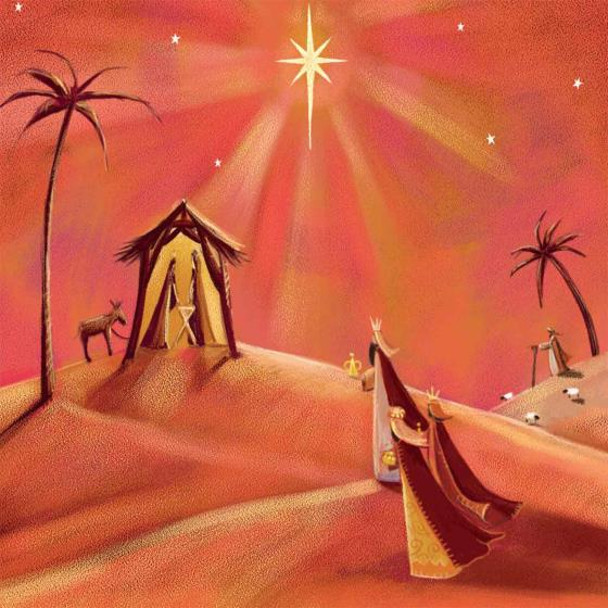 Nativity scene RSPB charity Christmas cards - 10 pack product photo