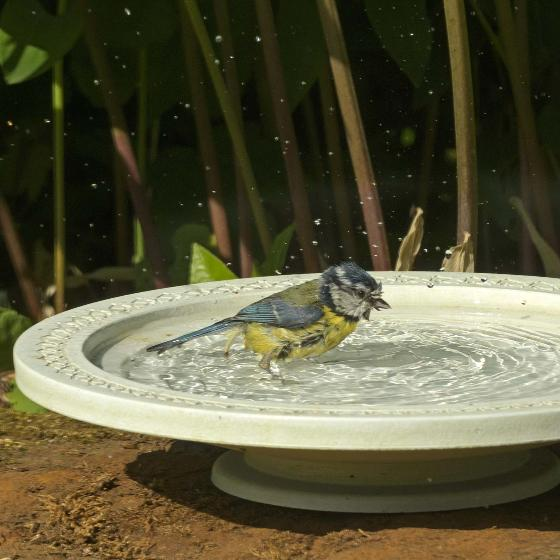 Nature Oasis bird bath & drinker product photo Side View -  - additional image 3 L