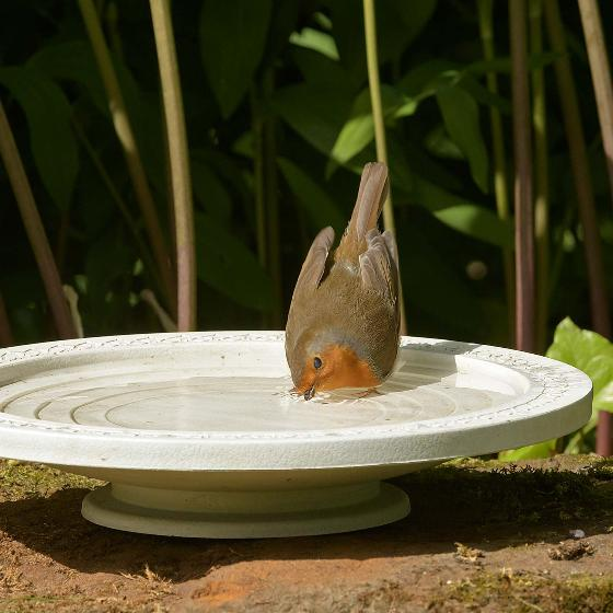 Nature Oasis bird bath & drinker product photo Back View -  - additional image 2 L