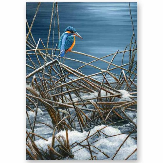 On the river RSPB charity Christmas cards - 10 pack product photo Default L