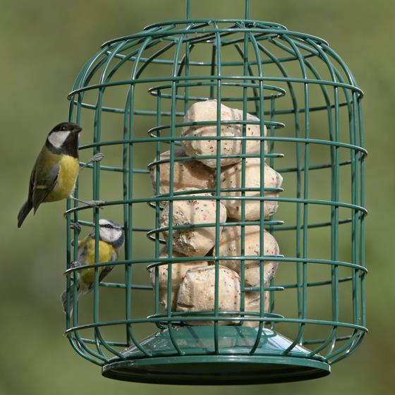 RSPB Suet feeder and guardian product photo Default L