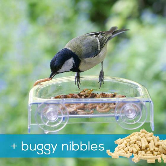Treat tray window feeder & buggy nibbles product photo