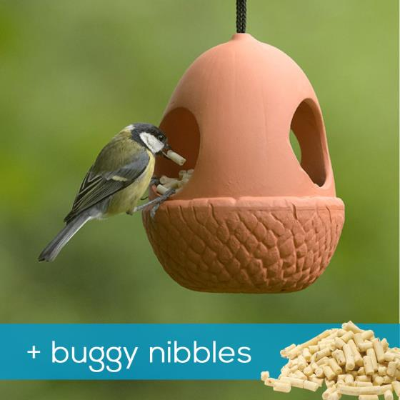 Acorn bird feeder & buggy nibbles product photo Default L