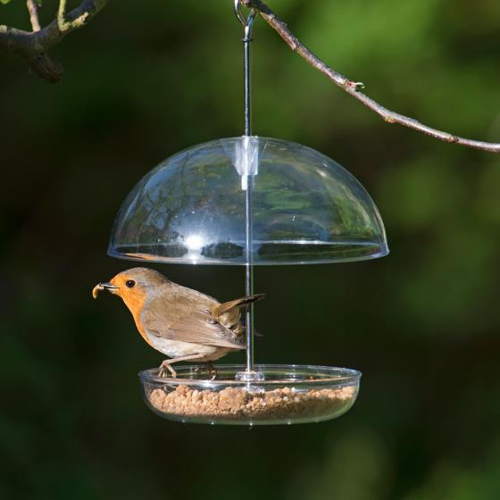 I love Robins feeder product photo Default L