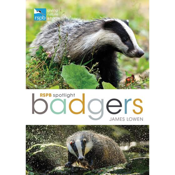 RSPB Spotlight badgers product photo Default L