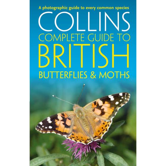 Collins complete guide to butterflies and moths product photo Default L