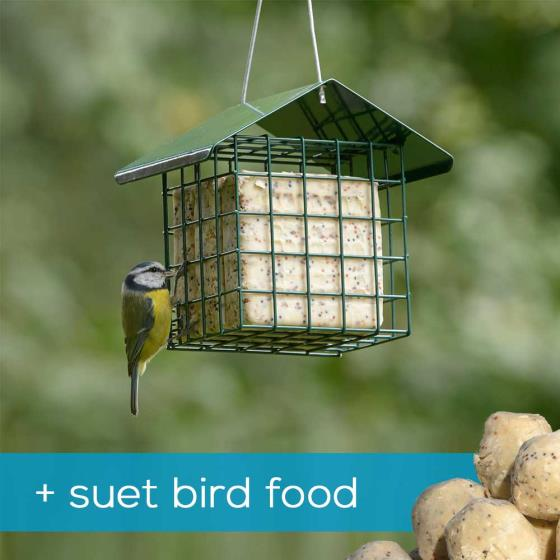 Dual suet feeder starter pack with fat balls & cakes product photo Default L