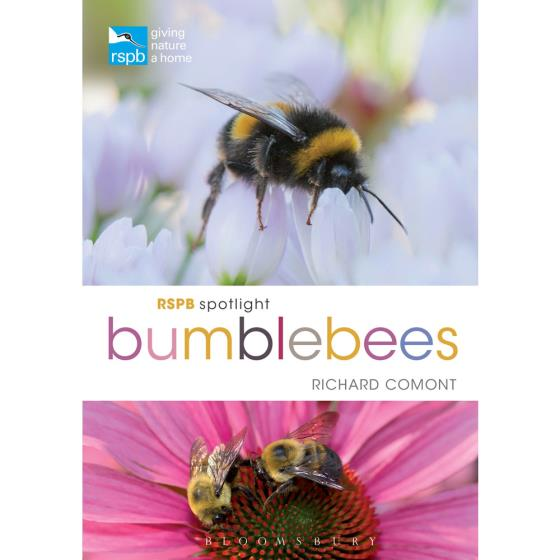 RSPB Spotlight bumblebees product photo Default L