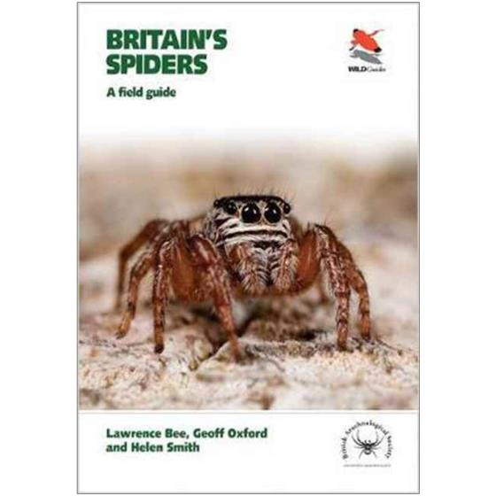 Britain's spiders: a field guide product photo Default L