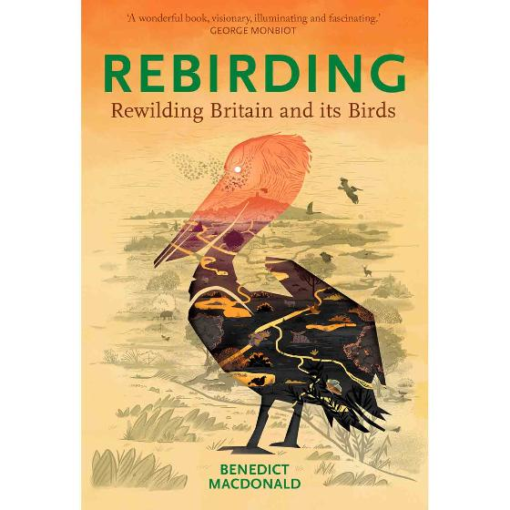 Rebirding - Rewilding Britain and its Birds by B Macdonald product photo Default L