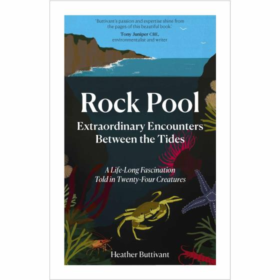 Rock Pool: Extraordinary Encounters Between the Tides by Heather Buttivant product photo Default L