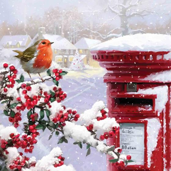 Round robin RSPB charity Christmas cards - 10 pack product photo Default L