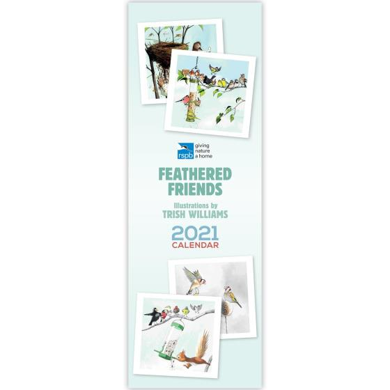 RSPB Feathered friends calendar 2021 product photo