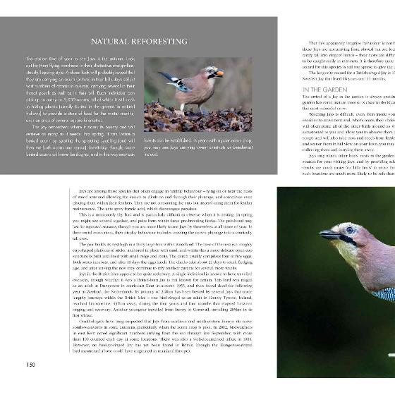 RSPB Garden birds by Marianne Taylor product photo Back View -  - additional image 2 L