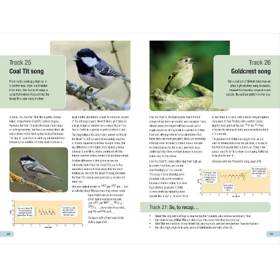 RSPB Guide to Birdsong by Adrian Thomas product photo additional image 4 L