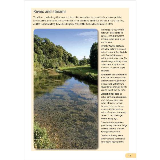 RSPB Guide to Birdsong by Adrian Thomas product photo Back View -  - additional image 2 L