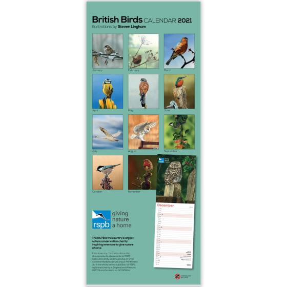 RSPB British birds illustrated calendar 2021 product photo Back View -  - additional image 2 L