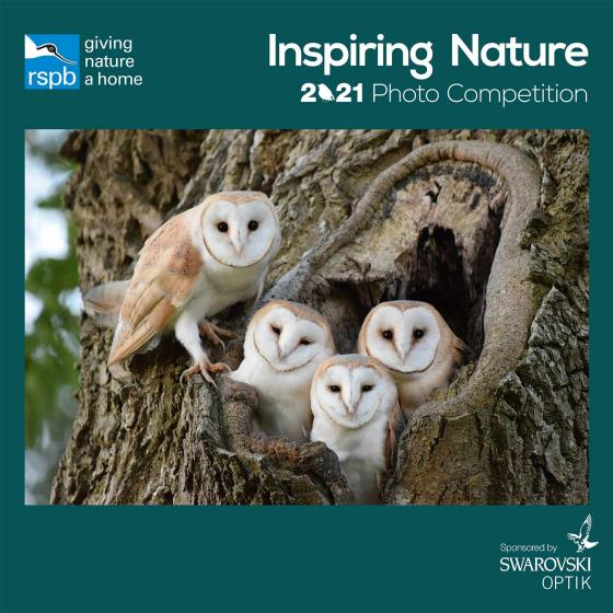 RSPB Inspiring nature photo competition calendar 2021 product photo