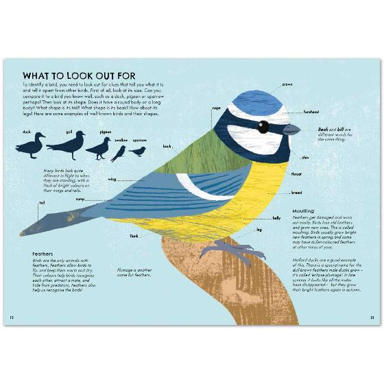 RSPB Nature Guide: Birds product photo Side View -  - additional image 3 L