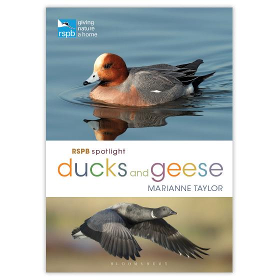 RSPB Spotlight Ducks and Geese product photo