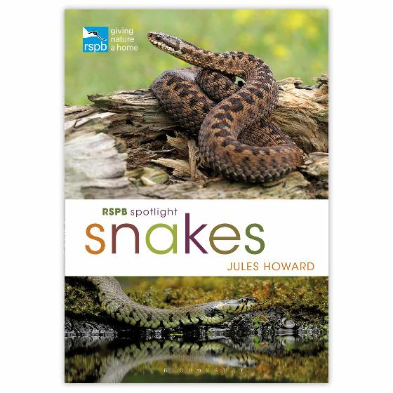 RSPB Spotlight Snakes product photo