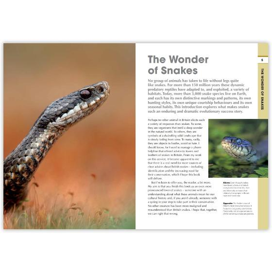 RSPB Spotlight Snakes product photo Side View -  - additional image 3 L