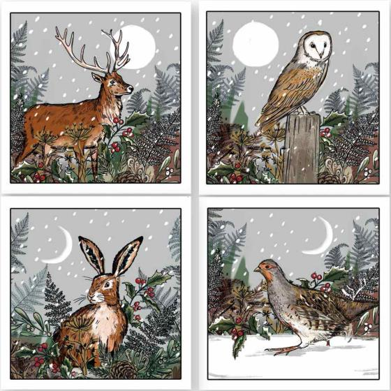 Silent night RSPB charity Christmas cards - 20 pack product photo