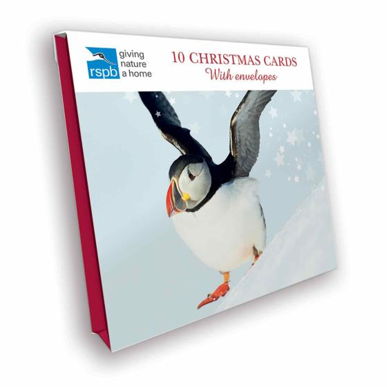 Snow fun RSPB charity Christmas cards - 10 pack product photo Side View -  - additional image 3 L