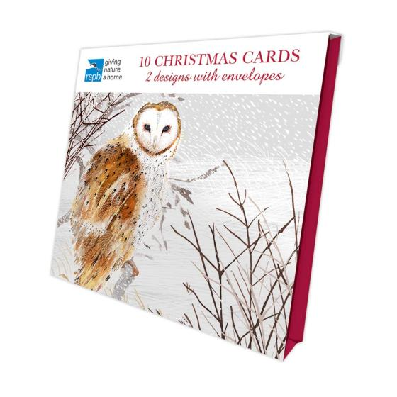 Snowy scene RSPB charity Christmas cards - 10 pack product photo Front View - additional image 1 L