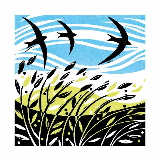 Swooping Swifts greeting card product photo Default L