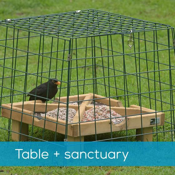 Ground feeding table plus Flat-topped wide mesh sanctuary product photo Default L