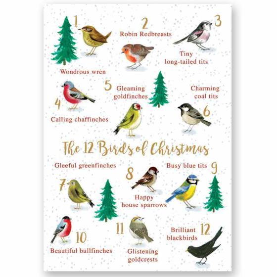 The 12 birds of Christmas RSPB charity Christmas cards - 10 pack product photo Default L