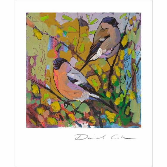 The bullfinches by Daniel Cole card product photo Default L