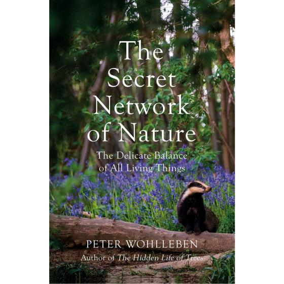 The Secret Network of Nature by Peter Wohlleben product photo Default L