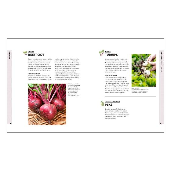 Veg in One Bed ...Month by Month product photo Back View -  - additional image 2 L