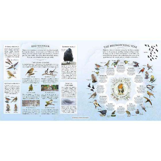 What's that garden bird?: Birdspotting Wheel and Guide Book product photo Back View -  - additional image 2 L