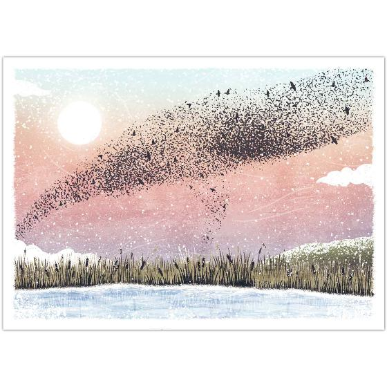 Winter skies RSPB charity Christmas cards - 10 pack product photo Default L