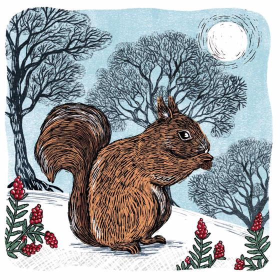 Winter's forage RSPB charity Christmas cards - 10 pack product photo Default L