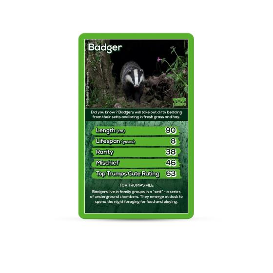 RSPB Woodland Animals Top Trumps product photo Front View - additional image 1 L