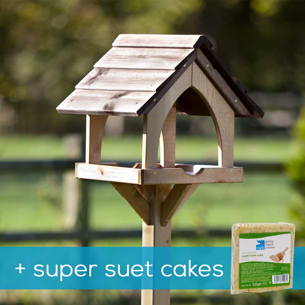 Gothic bird table & super suet cakes offer product photo