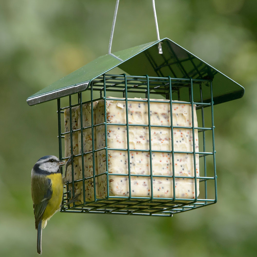 RSPB Super suet cakes, sunflower hearts product photo