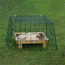 RSPB Ground feeding sanctuary wide mesh - New design product photo