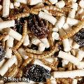 Peck 'n' Mix special blend 2.5kg refill bag x2 product photo Front View - additional image 1 T
