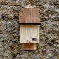 RSPB Single chamber bat box & seeds product photo Front View - additional image 1 T